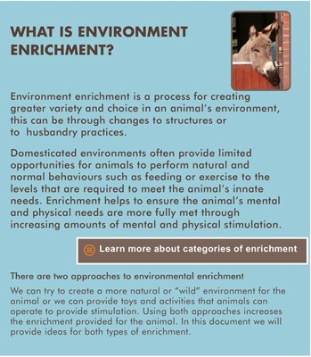 Different types of Enrichment categories