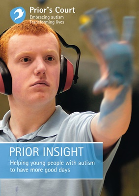 Prior Insight - 1