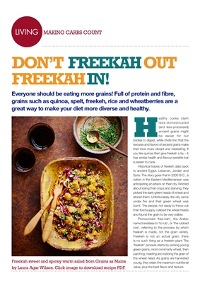 Desang Diabetes Magazine, Making Carbs Count, carbohydrate counting for diabetes, carb content of fr