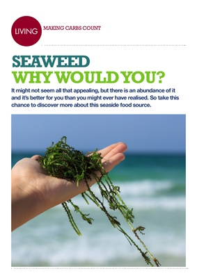 Making Carbs Count seaweed
