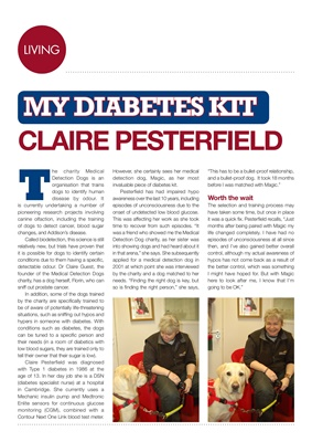 My diabetes kit Claire Pesterfield