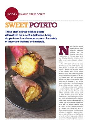 Making Carbs Count sweet potato