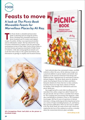 desang, diabetes diet, diabetic diet, counting carbohydrates, food for diabetes, The Picnic Book by